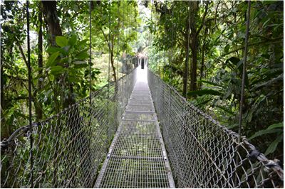 Picture Of A Steel Bridge Near The Arenal Volcano In Costa Rica